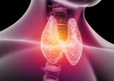 dieta para hipotiroidismo 1