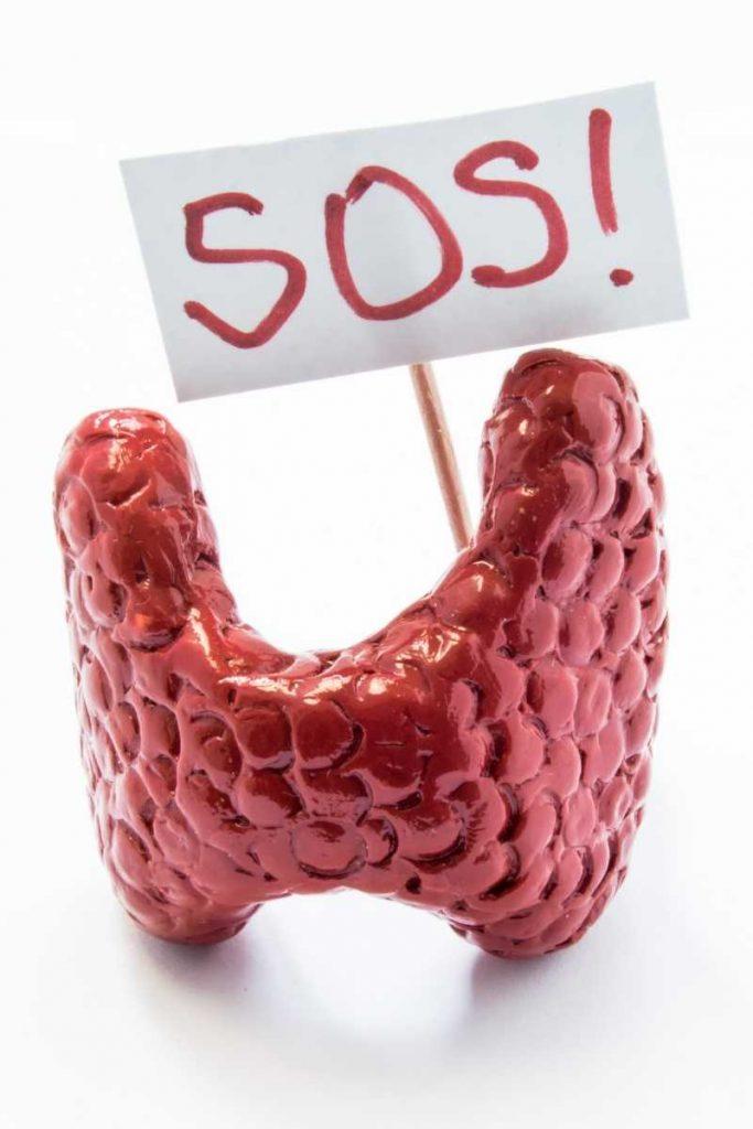 hipotiroidismo engorda 1