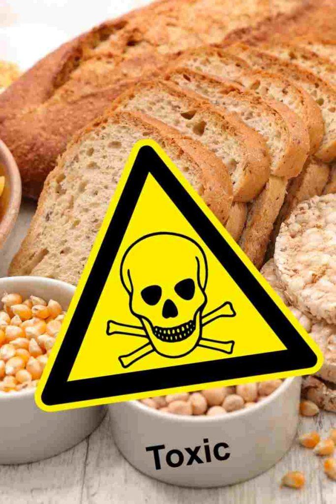 dieta sin gluten para hipotiroidismo 1